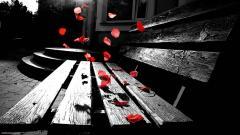 Romantic Wallpapers 7269