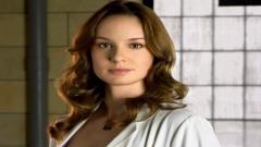 Sarah Wayne Callies 13408