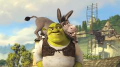Shrek and Donkey 33400
