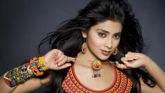 Shriya Saran Wallpaper 30144