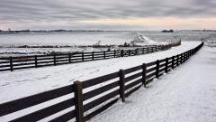 Snow Fence Backgrounds 39468