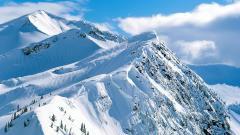 Snowy Mountain 27141