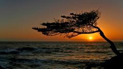 Stunning California Sunset 30154