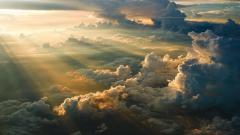 Sun Rays 29809