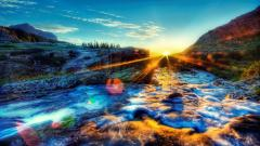 Sunshine Wallpaper 26255