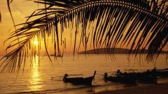 Thailand Beach 26919