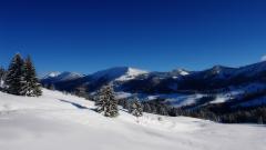The Alps 28880