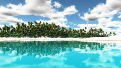 Tropical Background 25227
