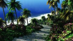 Tropical Wallpaper 25221