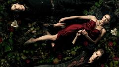 Vampire Diaries Wallpaper 12143