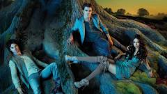 Vampire Diaries Wallpaper 12158