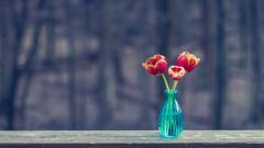 Vase Wallpaper 39297