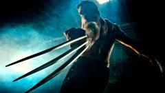 Wolverine Wallpaper 29515