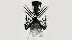 Wolverine Wallpaper 29516