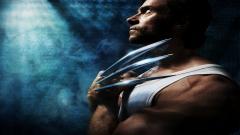 Wolverine Wallpaper 29517