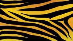 Zebra Background 18495