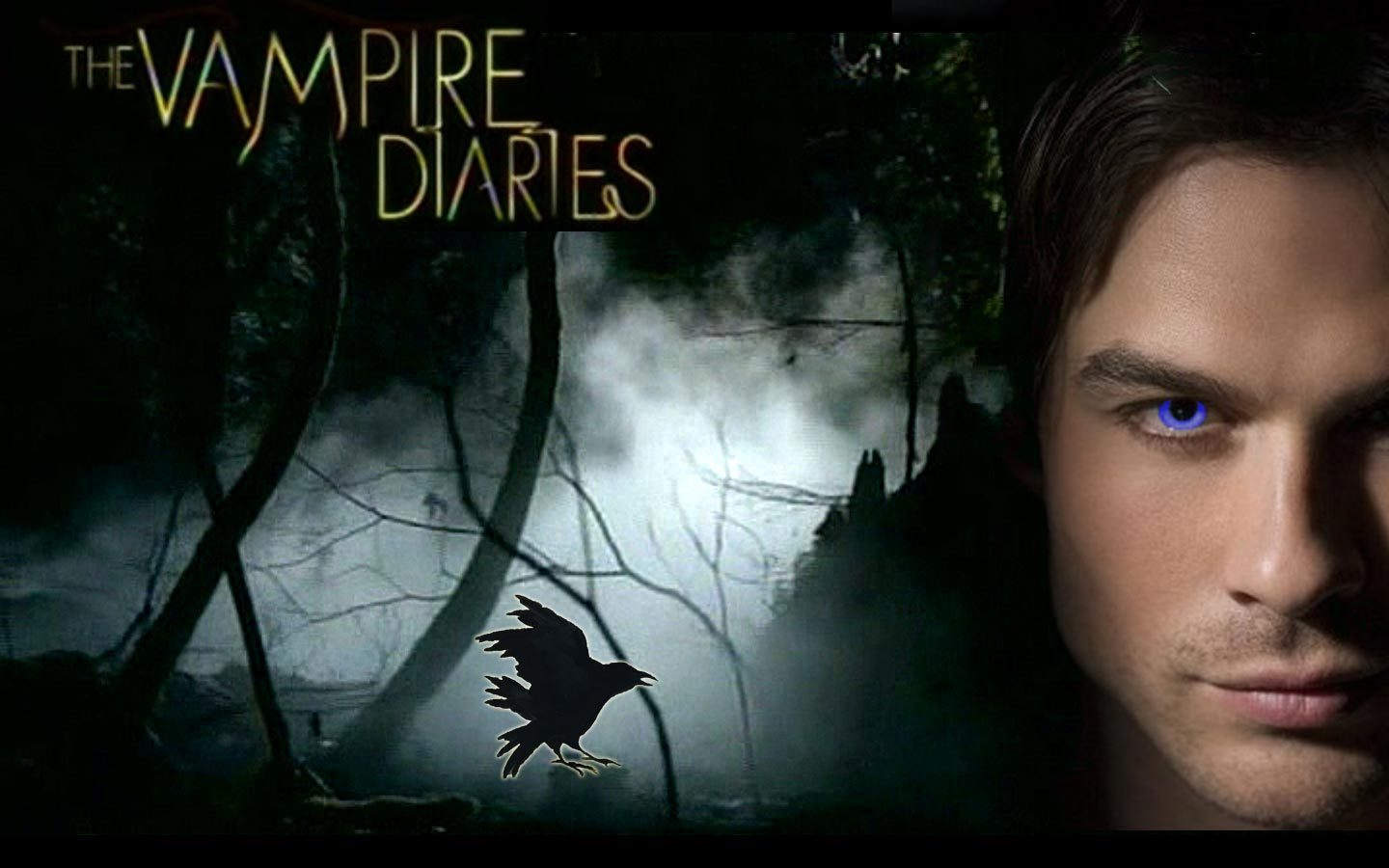 Vampire Love Hd Wallpaper : Vampire Diaries Wallpaper 12159 1440x900 px ~ HDWallSource.com