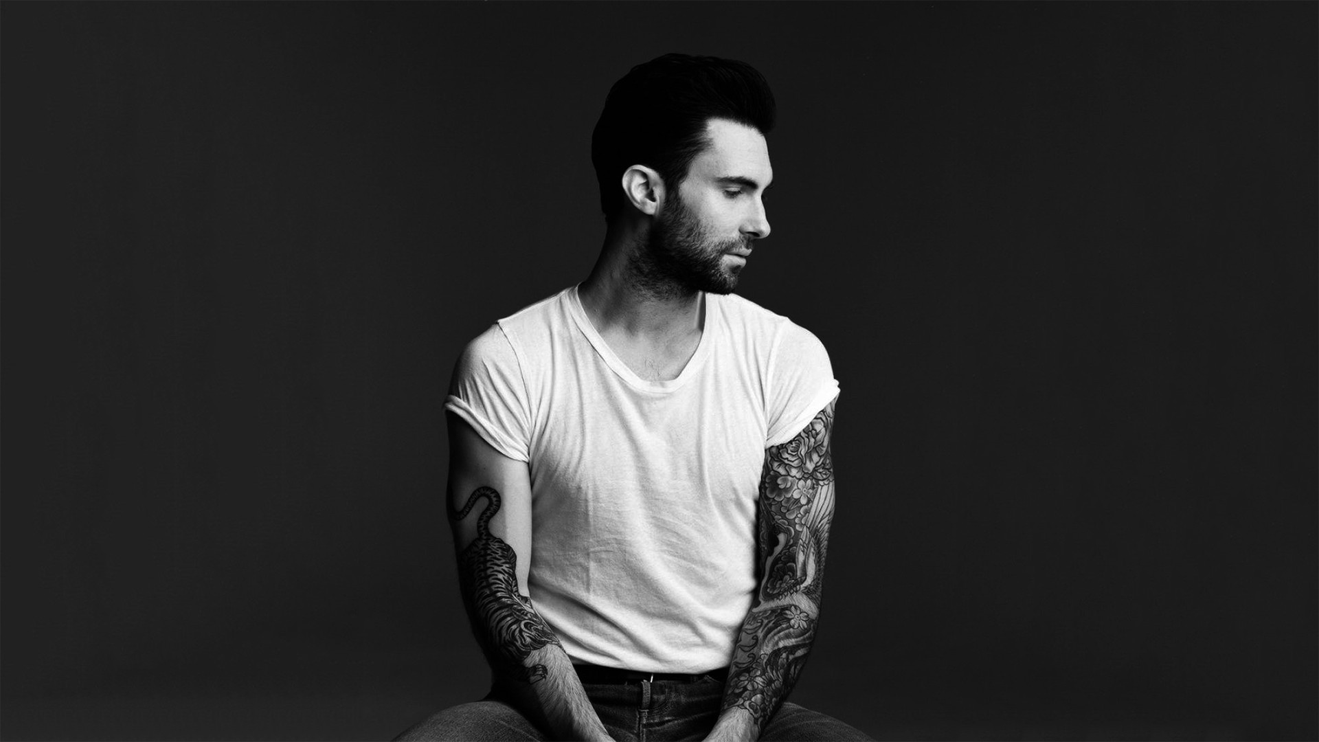 adam levine wallpaper 26644