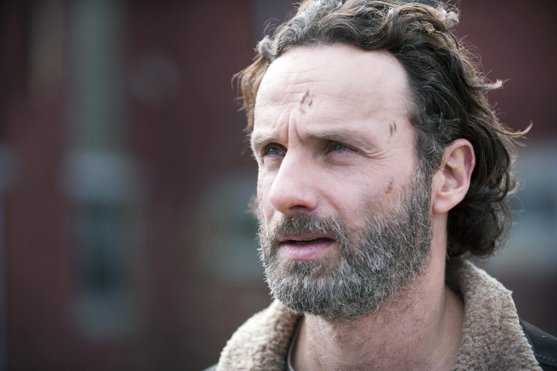 andrew lincoln 41894