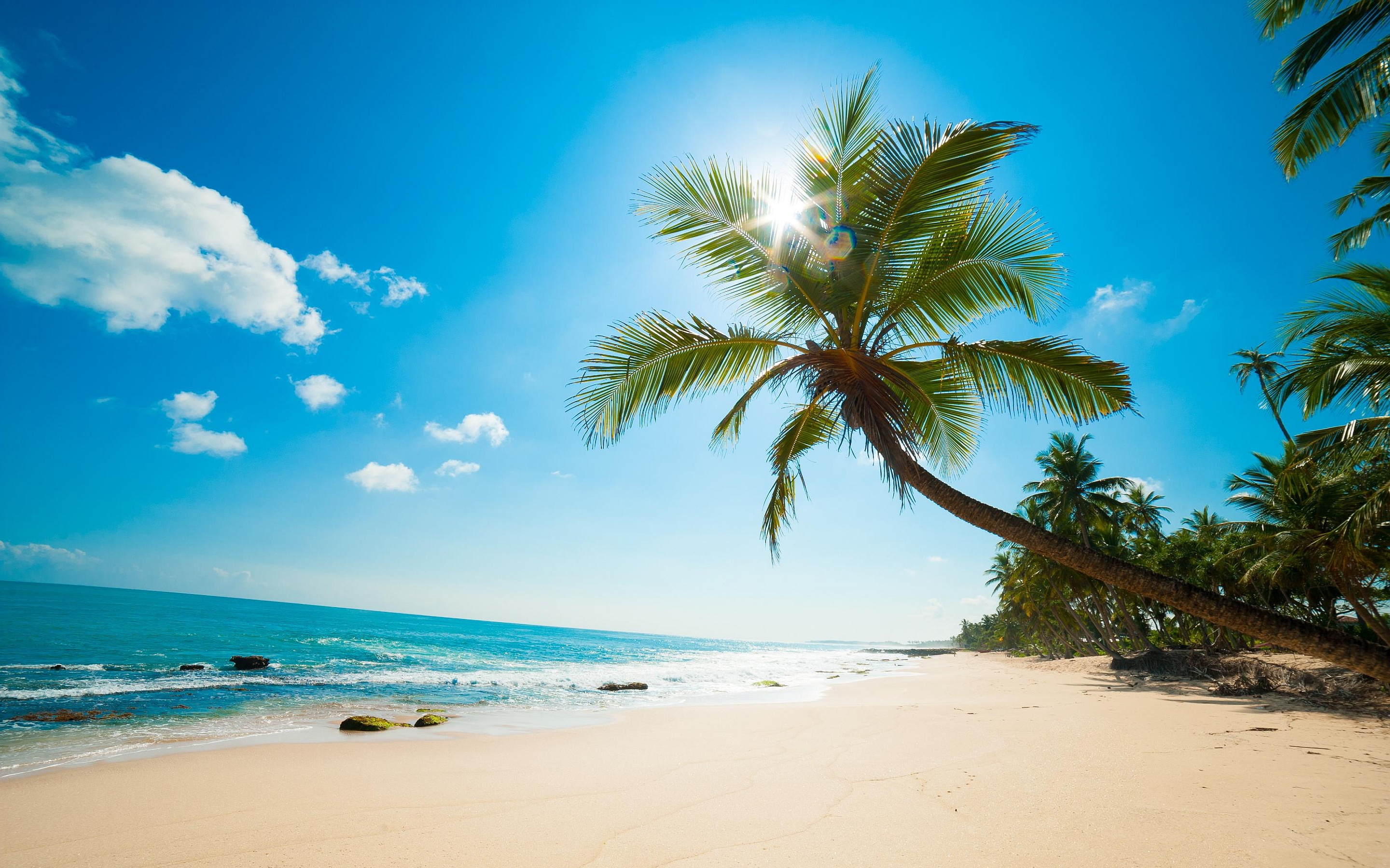 awesome beach background 17580