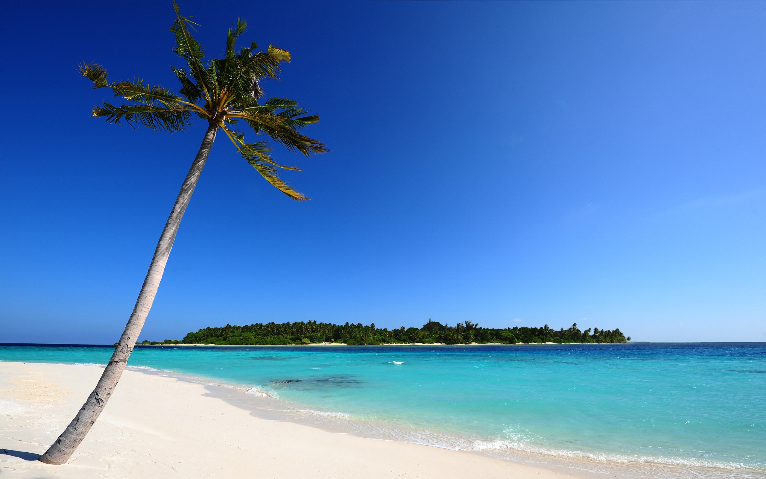 beach backgrounds beach powerpoint templates home network schematic, Modern powerpoint