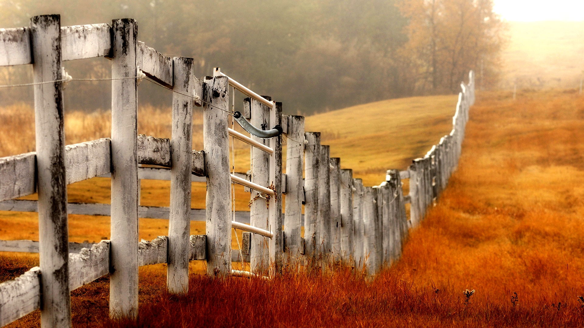 beautiful wood fence wallpaper 31761
