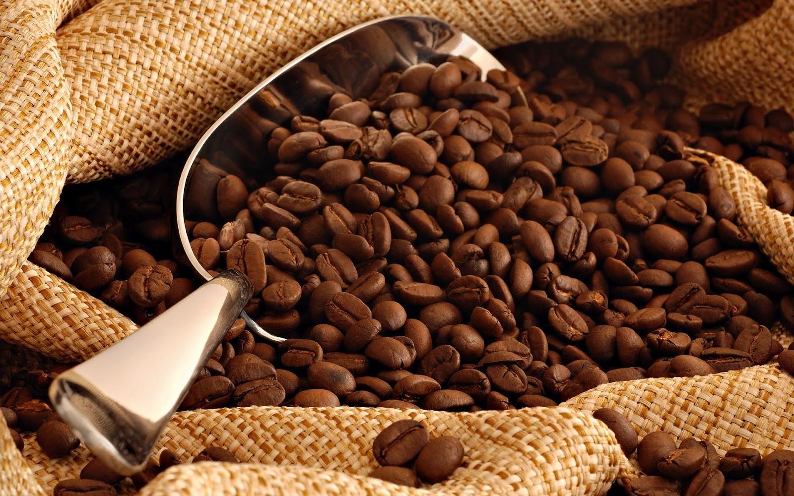 coffee beans 42417