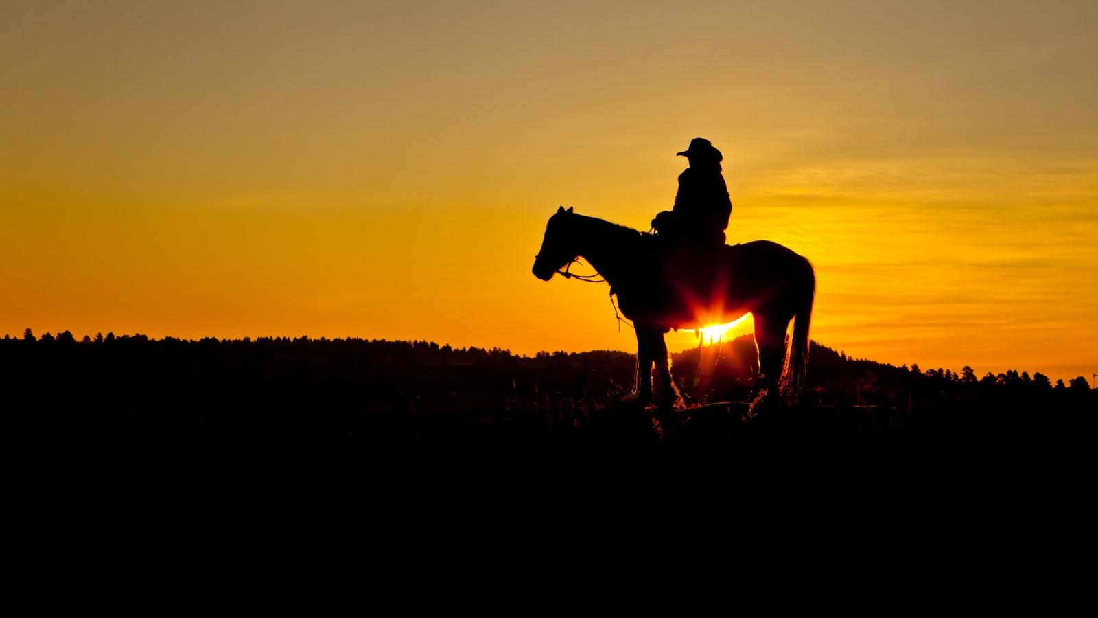 cowboys 25073