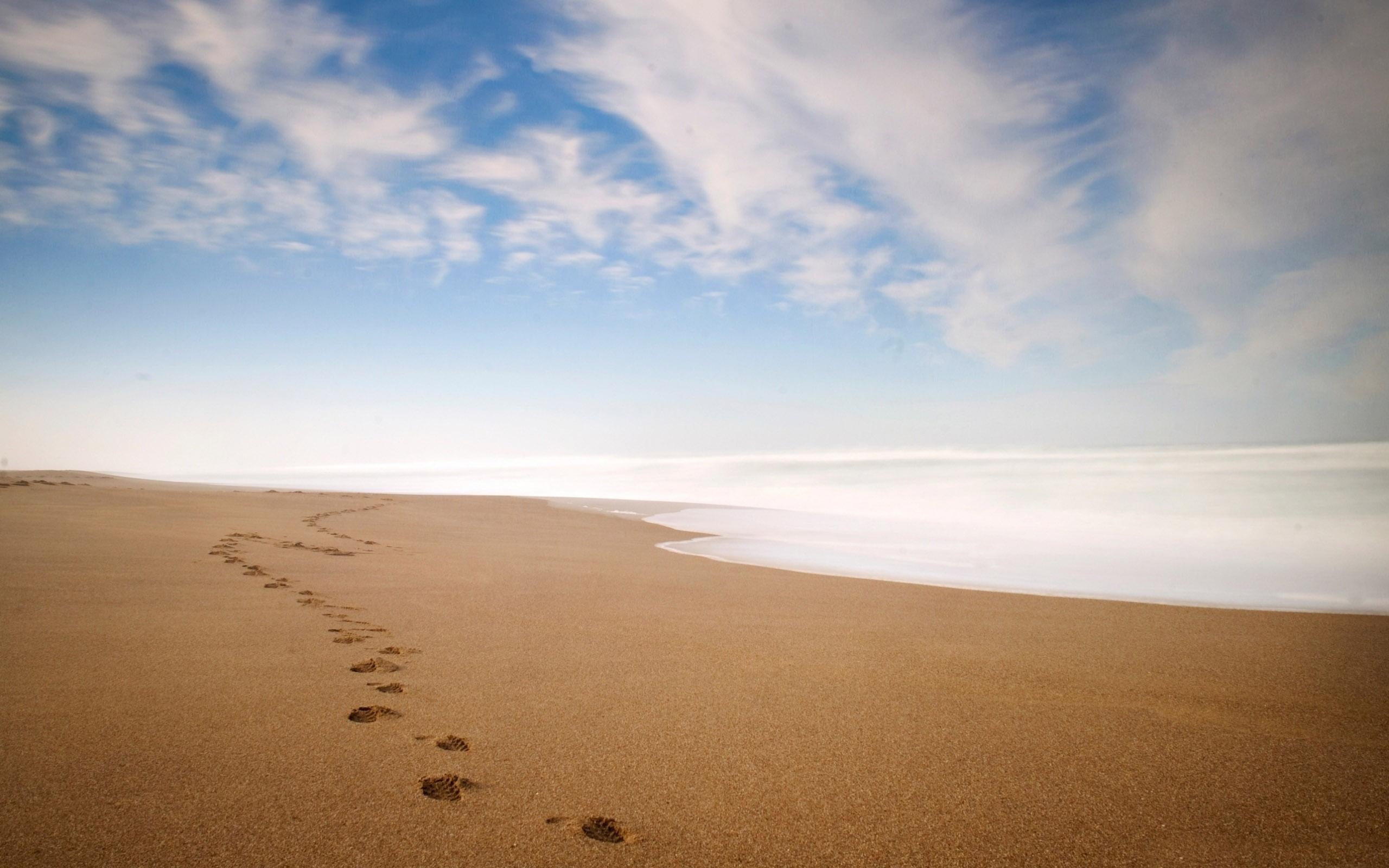 fantastic footprints wallpaper 38246