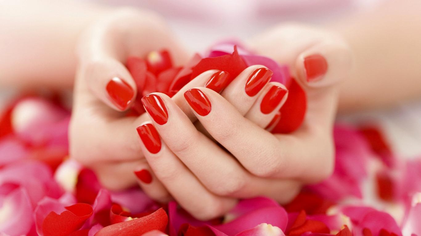 flower petals 25881