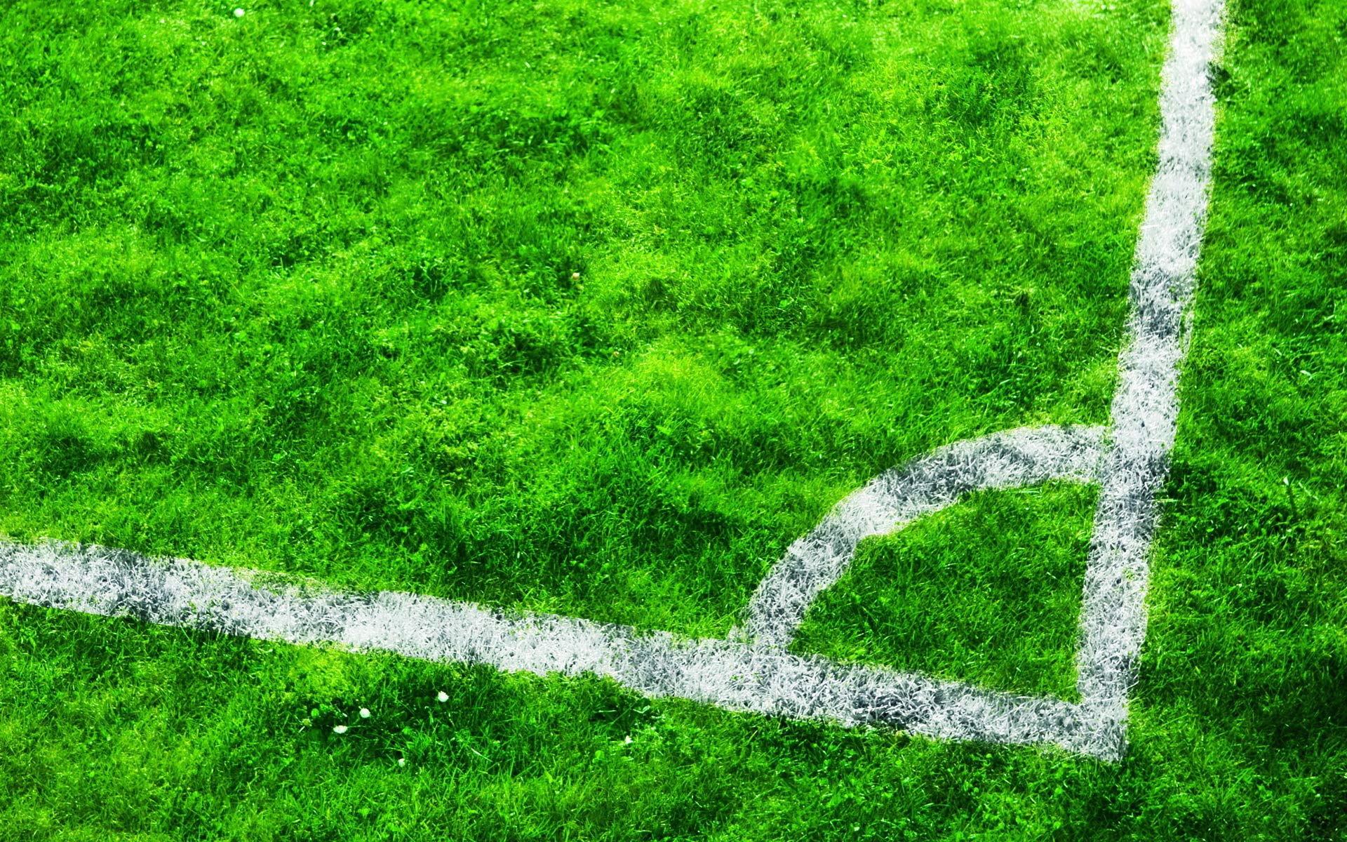Football Wallpaper 14309 1920x1200 Px HDWallSource