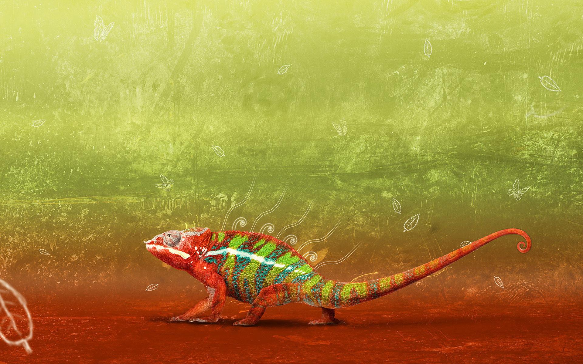 chameleon wallpaper 1920x1200 - photo #9
