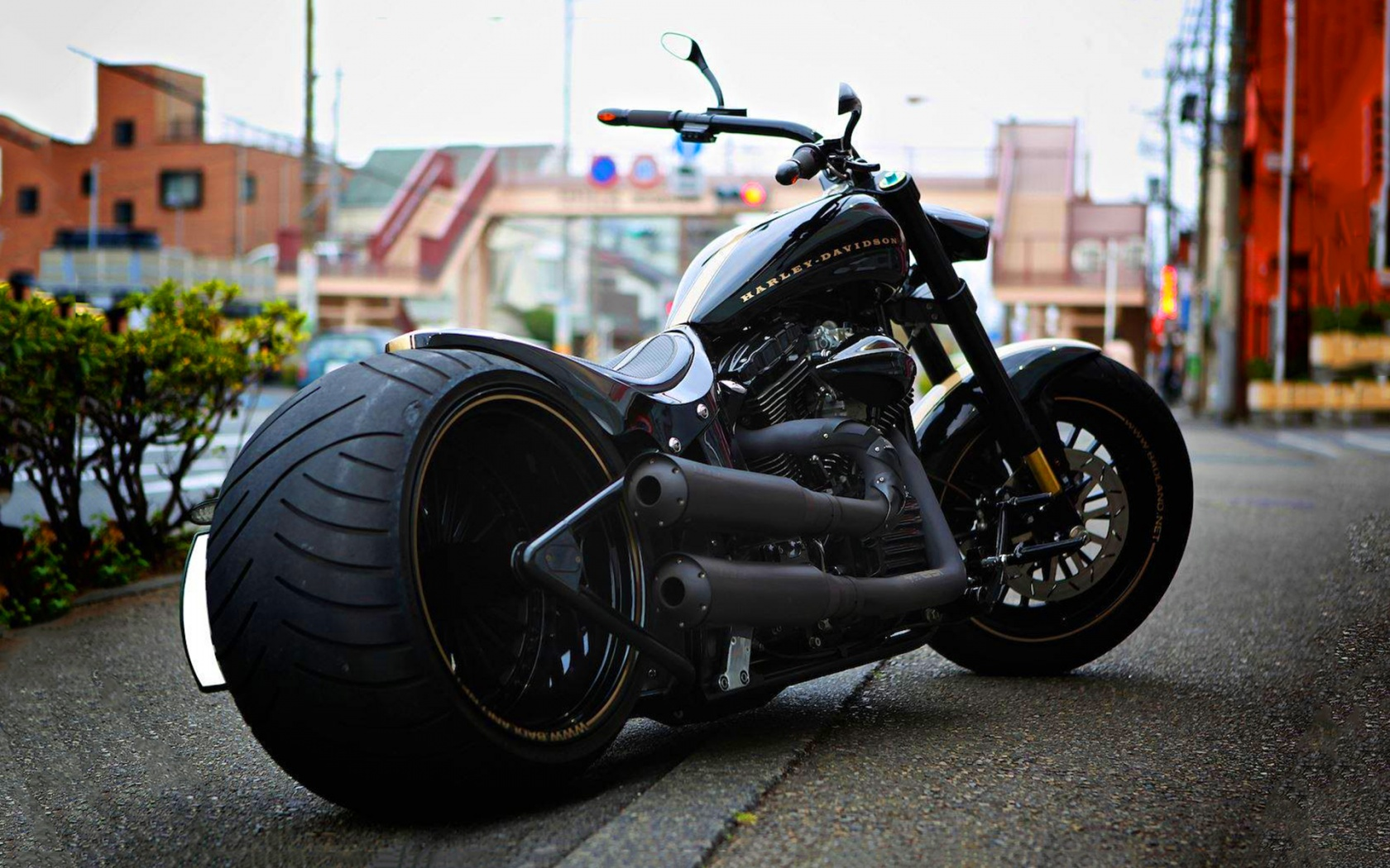 harley davidson wallpaper 16883