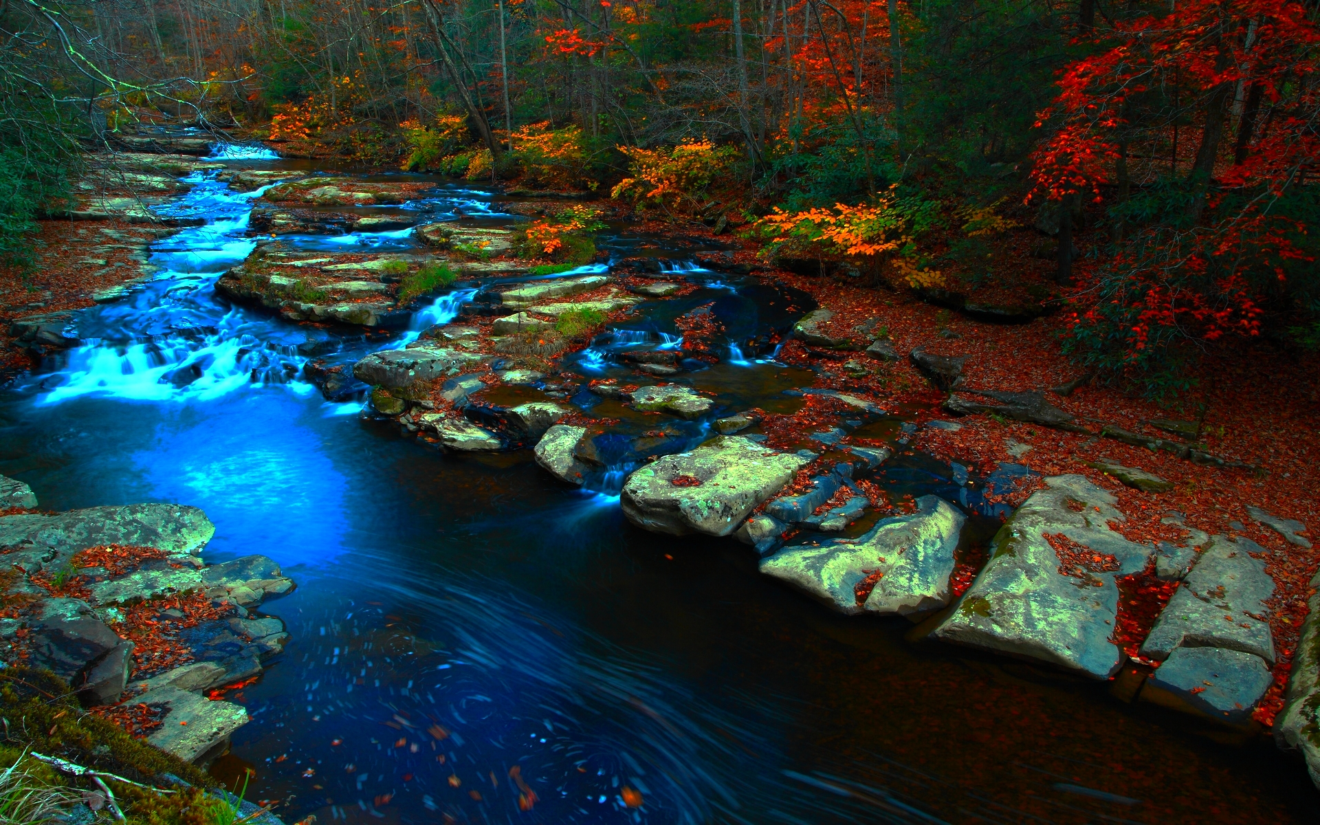 lovely forest stream 34434