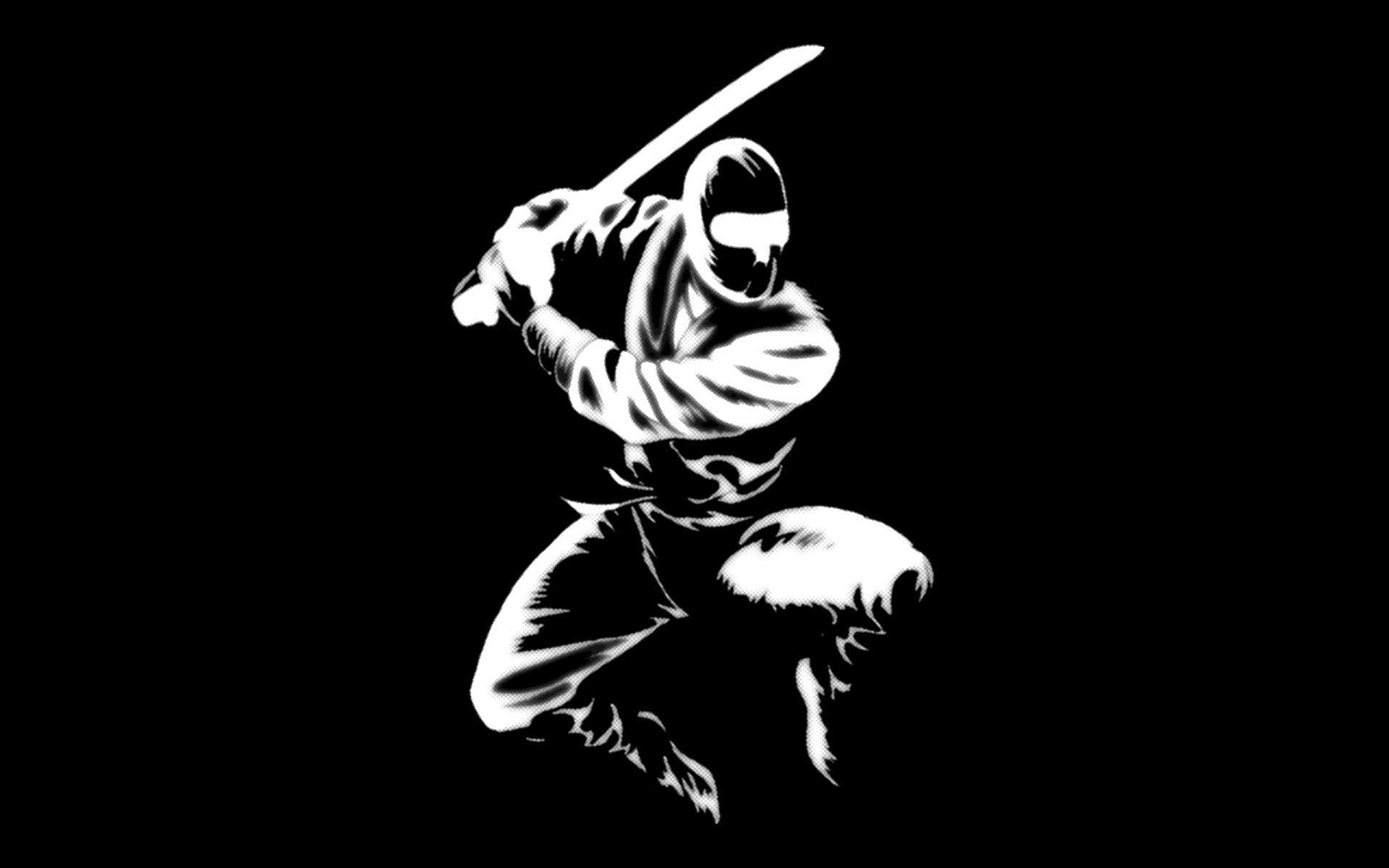 Ninja Wallpaper 23850 1920x1200 px HDWallSourcecom