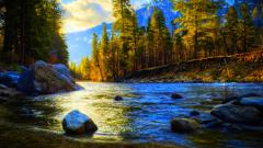 Amazing Creek Wallpaper 31421