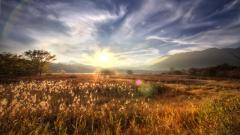 Amazing Sunbeam Wallpaper 31324
