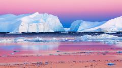 Arctic 26652