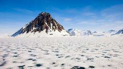 Arctic Landscape 26657