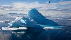 Arctic Wallpaper 26655