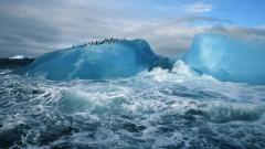 Arctic Wallpaper 26656