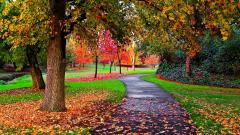 Autumn Wallpaper 13849