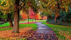 Autumn Wallpaper 13849