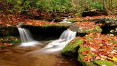 Autumn Wallpaper 13851
