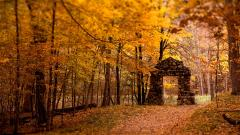 Autumn Wallpaper 13858