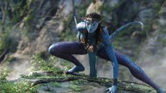 Avatar Wallpaper 23835