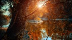 Awesome Riverscape Wallpaper 40601