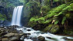 Awesome Waterfall Wallpaper 19636