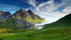 Beautiful Mountain Meadow 33440