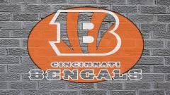 Bengals Wallpaper 14738